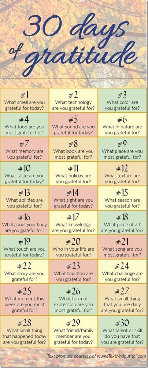 Gratitude in June_thumb