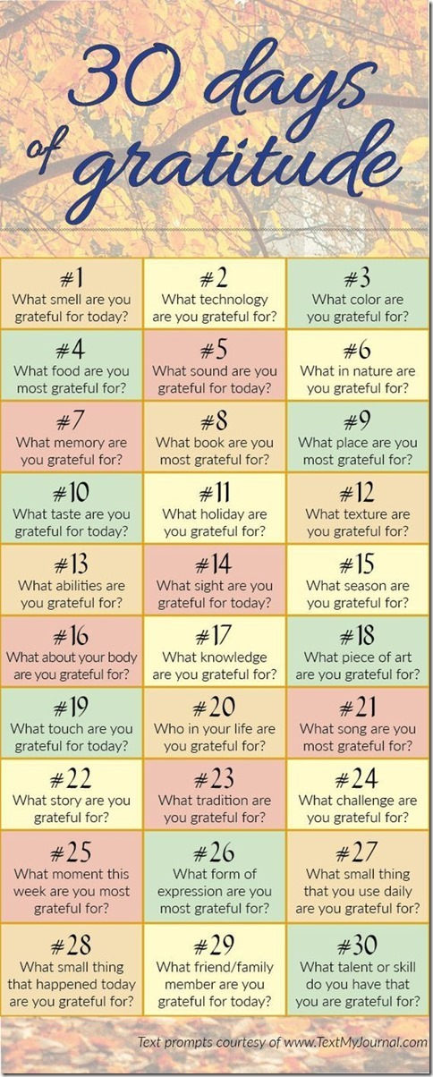 Gratitude in June_thumb