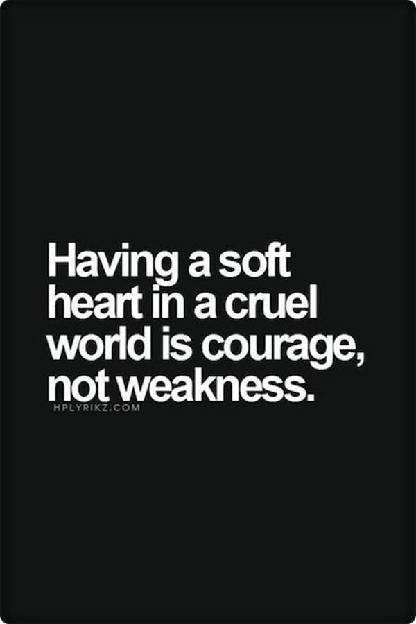 Quotes (8)