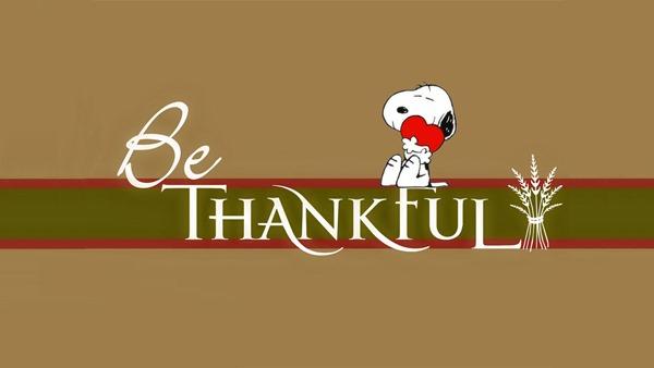 Thanksgiving (18)