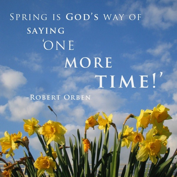 Spring Theme (5)