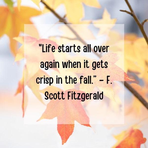 Quotes Autumn (1)