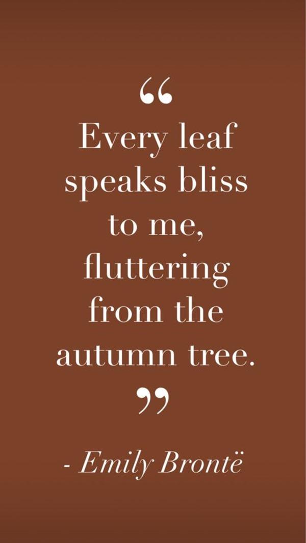 Quotes Autumn (2)