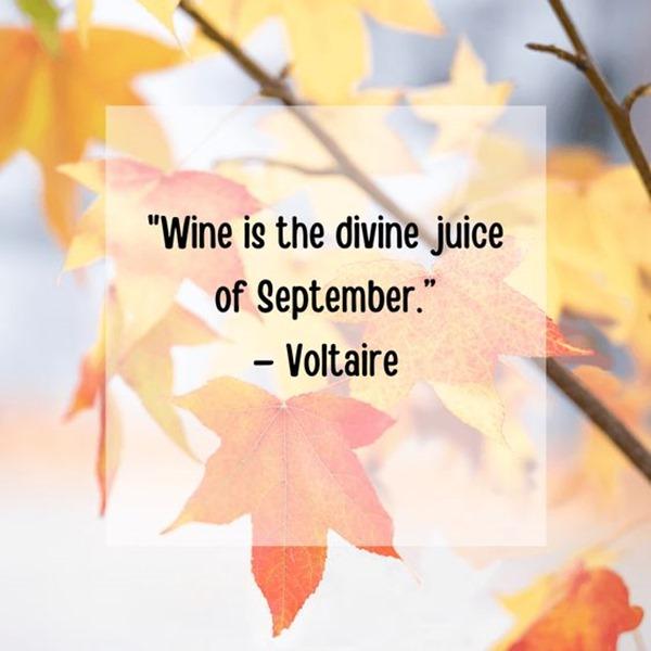 Quotes Autumn (6)